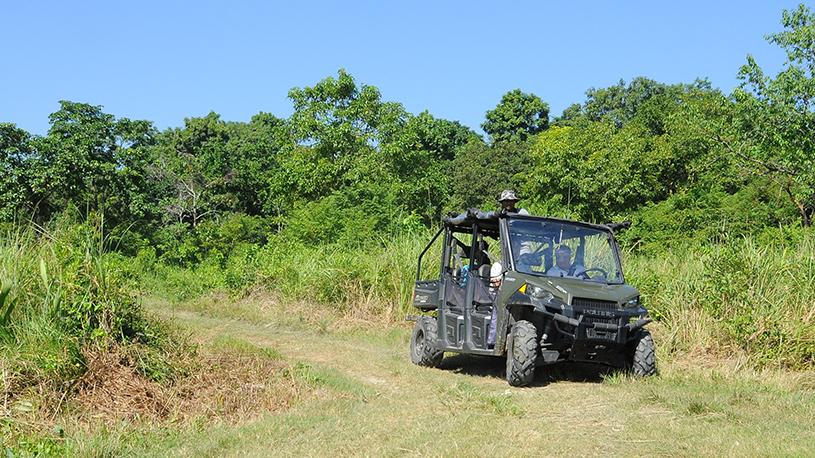 jeep-safari-1-pkd_2072
