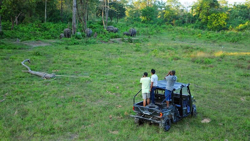 jeep-safari-3pkd_2145